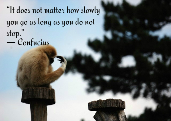It does not matter how slowly you go as long as you do not stop. ~ Confucius